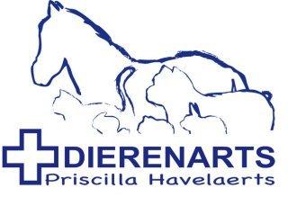 Dierenarts Priscilla Havelaerts
