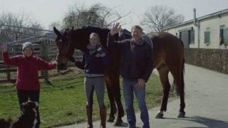 Paardenmelkerij De Beck