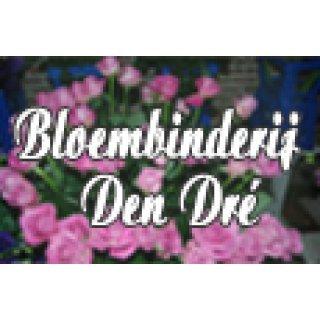 Bloembinderij Den Dre