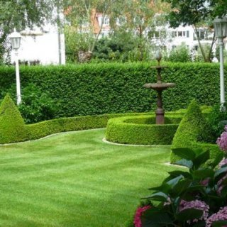 Aries Gardens