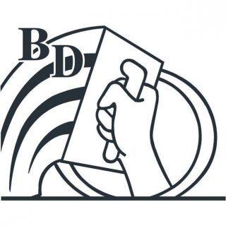 BD Pleisterwerken