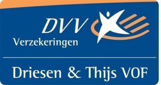 Logo Driesen Thijs