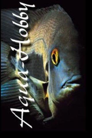 Aqua Hobby nv