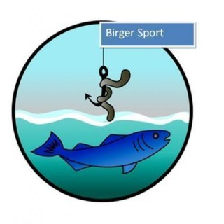 Birger sportLogo