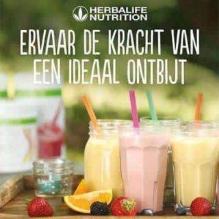 Herbalife Nutrition Onafhankelijk Herbalife Member
