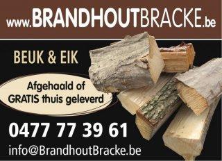 Brandhout Bracke