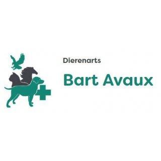 Dierenarts Avaux