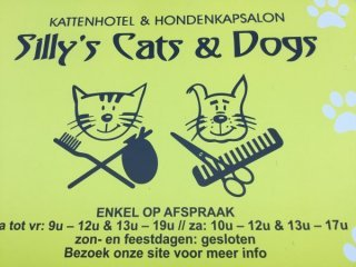 Silly's Cats & Dogs