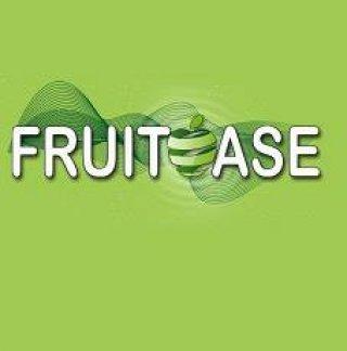 Fruitoase